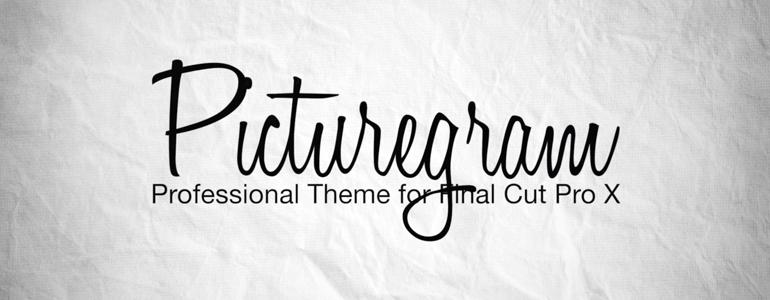 Professional - Web Theme for Final Cut Pro X
