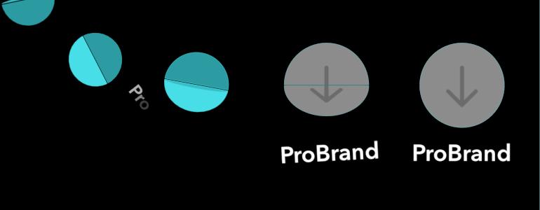 Final Cut Pro X Plugin ProBrand Flip
