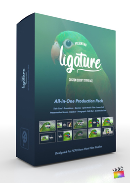 Pixel Film Studios - Ligature Production Package